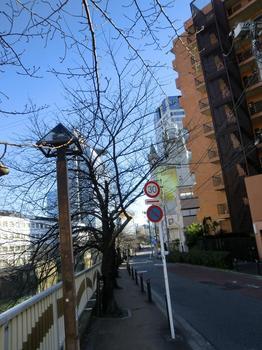 110102目黒散歩_21今も健在目黒エンペラー.JPG