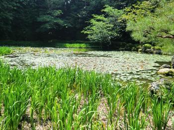 110518-19京都法事_48.JPG