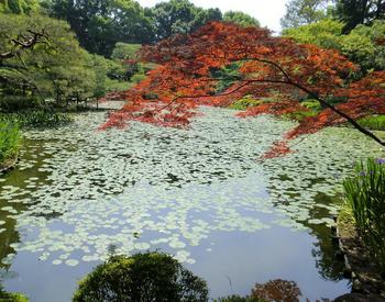 110518-19京都法事_57-2.jpg