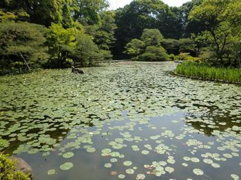 110518-19京都法事_63.JPG