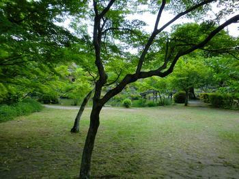 120518渉成園_28.JPG