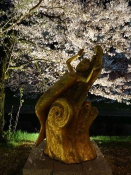 DSC02754松川夜桜G.JPG