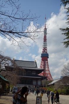 DSC02759増上寺.JPG