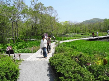 DSC03175湿生花園.JPG