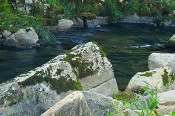 river_00026.jpg