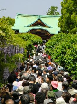 110504亀戸天神社_12.JPG