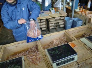 130125Tsukiji Market_57.JPG